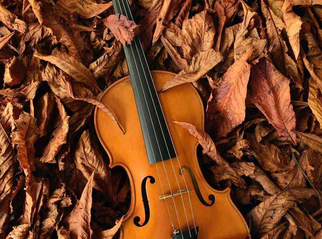Comment choisir un violon