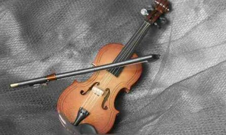 Comment choisir son violon pour debutant