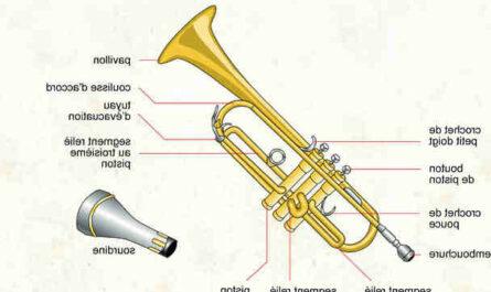 Embouchure trompette comment choisir