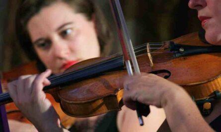 Violon comment jouer