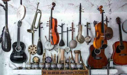 Comment choisir corde violon