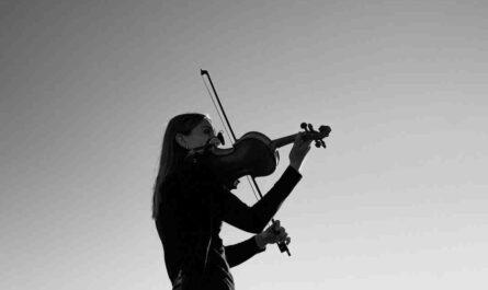 Comment tenir son violon